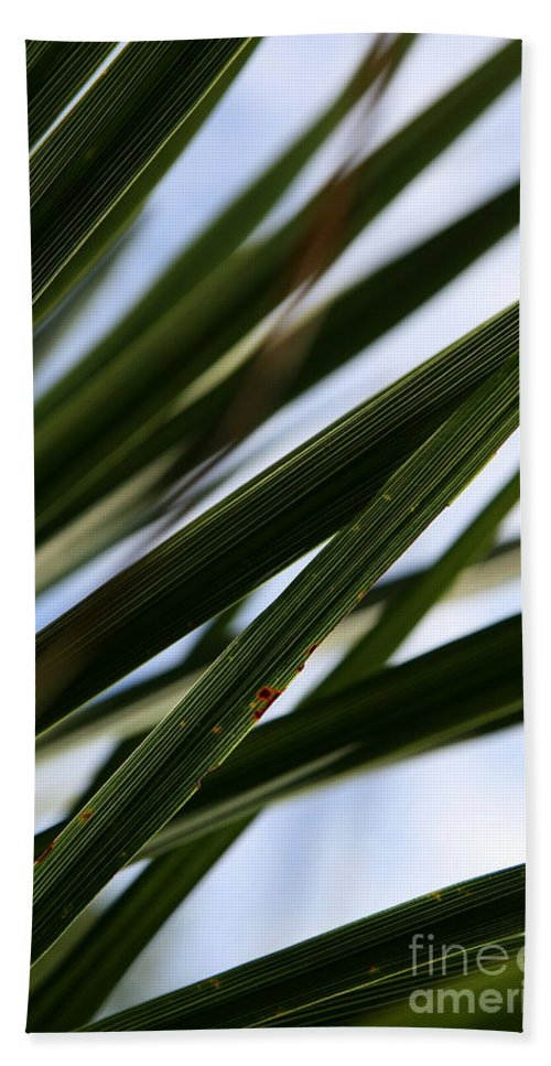 Green Bath Sheet featuring the photograph Blades Of Grass by Neal Eslinger