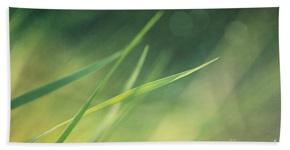 Grass Hand Towel featuring the photograph Blades Of Grass Bathing In The Sun by Priska Wettstein