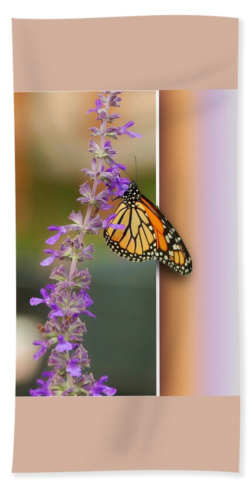 Butterfly Bath Sheet featuring the photograph Blank Greeting Card 3 by Leticia Latocki