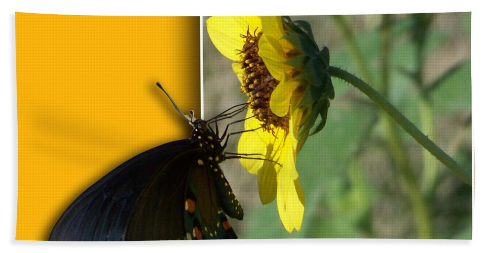 Butterfly Bath Sheet featuring the photograph Blank Greeting Card 4 by Leticia Latocki