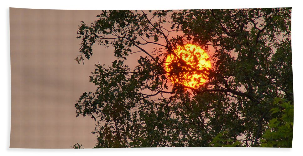 Blazing Hand Towel featuring the photograph Blazing Sun Hiding Behind A Tree by Mick Anderson