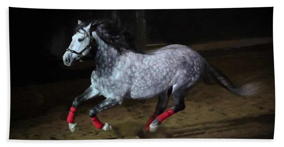 Freisian Hand Towel featuring the photograph Blazzing Horse by Athena Mckinzie