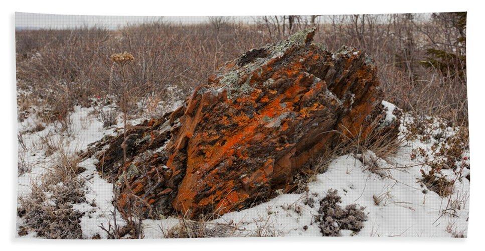 Arctic Hand Towel featuring the photograph Bleak Winter Arctic Steppe Orange Lichens Rock by Stephan Pietzko