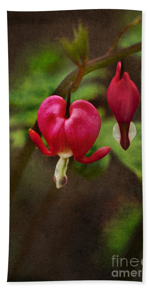 Flower; Bleeding Heart; Beautiful; Bloom; Nature; Dicentra; Floral; Garden; Green; Red; Outdoors; Outside; Perennial; Hanging Hand Towel featuring the photograph Bleeding Heart by Margie Hurwich