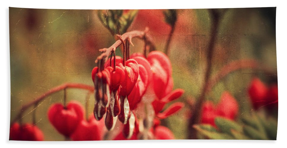 Love Hand Towel featuring the photograph Bleeding Hearts by Spikey Mouse Photography