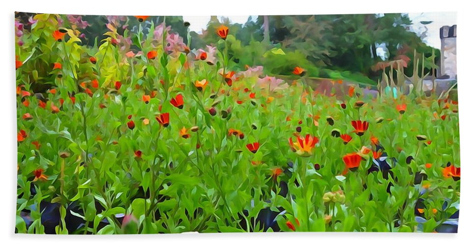 Poppy Hand Towel featuring the photograph Blooming Beauties by Charlie and Norma Brock