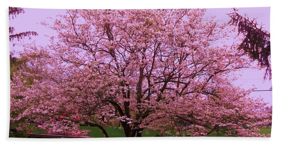 Blossoming Hand Towel featuring the painting Blossoming Almond Tree by Eric Schiabor