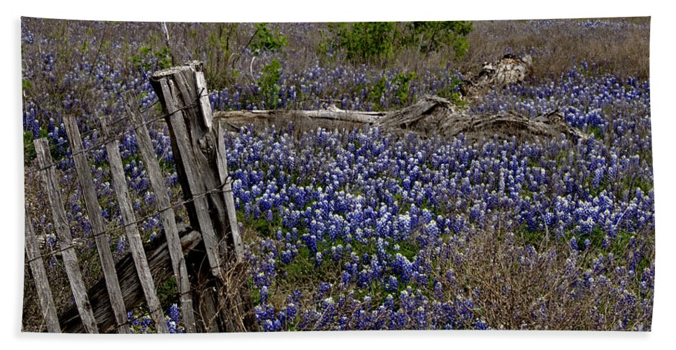 Wildflowers Hand Towel featuring the photograph Blue Bonnet Fence V2 by Douglas Barnard