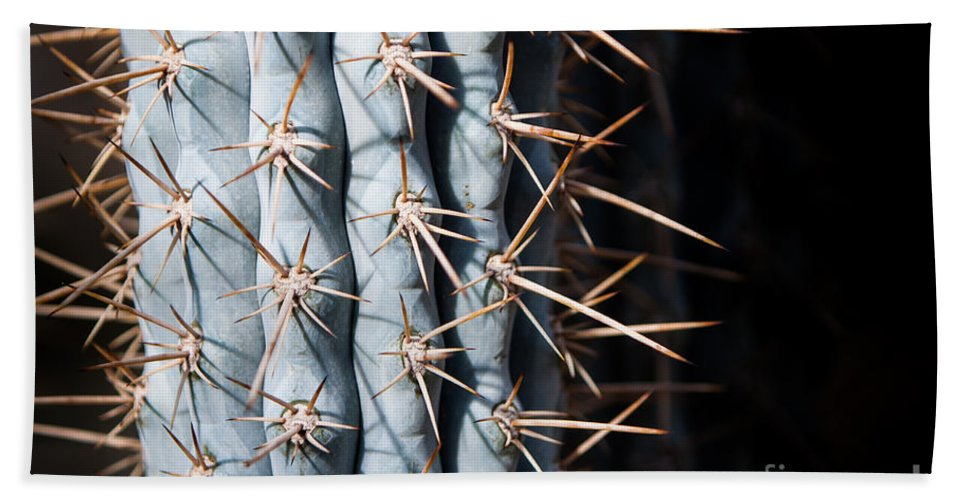 Botanical Hand Towel featuring the photograph Blue Cactus by John Wadleigh
