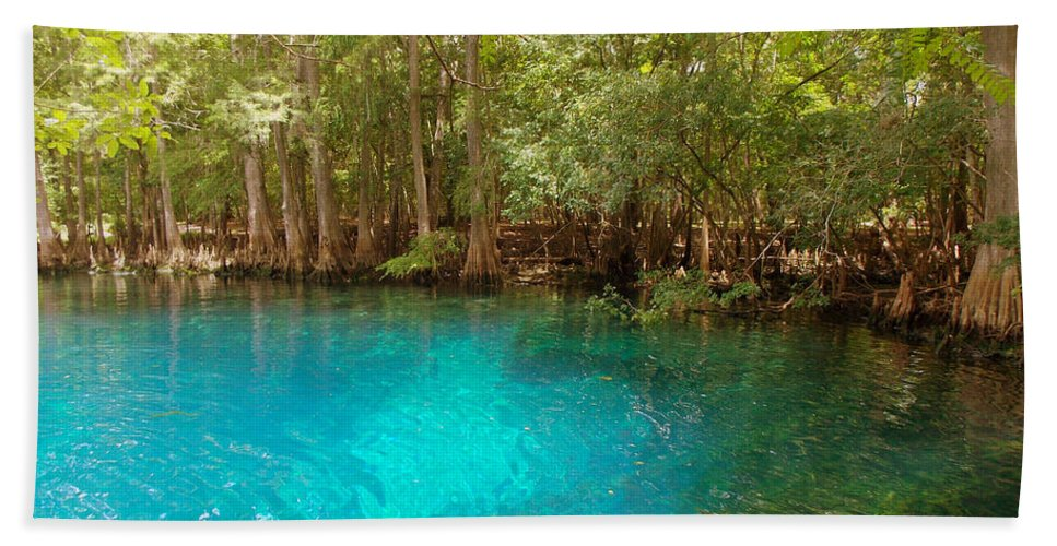 Manatee Springs Chiefland Florida Bath Sheet featuring the photograph Blue Chill 1 by Sheri McLeroy