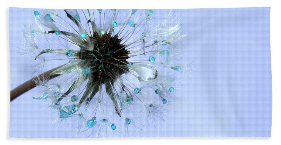 Dandelion Hand Towel featuring the photograph Blue Dandelion by Krissy Katsimbras