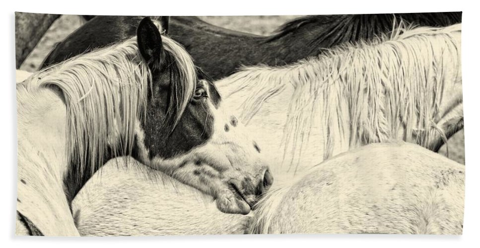 Horse Bath Sheet featuring the photograph Blue Eyed Beauty Two by Alice Gipson
