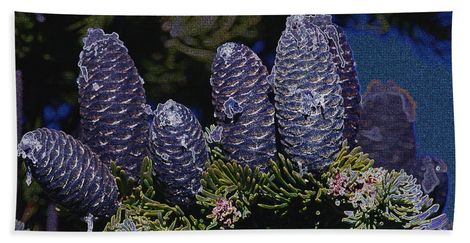 Fir Cones Hand Towel featuring the photograph Blue Fir Cones 2 Outlined by Sharon Talson