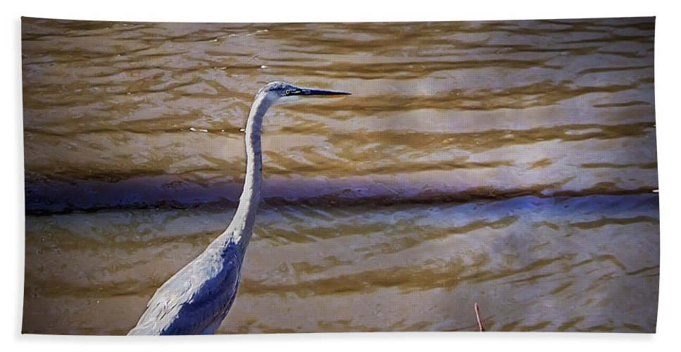 2d Hand Towel featuring the photograph Blue Heron - Shallow Water by Brian Wallace