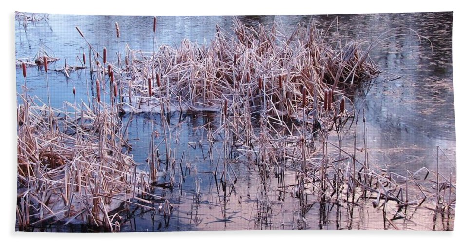 Landscape Bath Sheet featuring the photograph Blue Ice And Reflections by John Malone