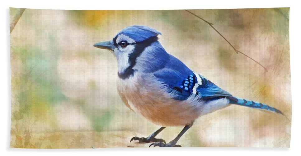 Bird Bath Sheet featuring the photograph Blue Jay - Digtial Paint by Debbie Portwood