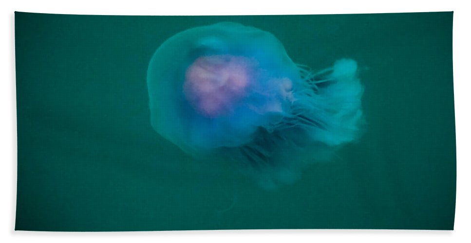 Moon Hand Towel featuring the photograph Blue Jelly Series 2 by Paula OMalley