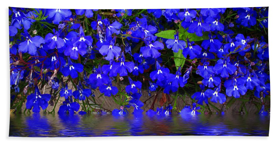 Flower Hand Towel featuring the photograph Blue Lobelia by Joyce Dickens