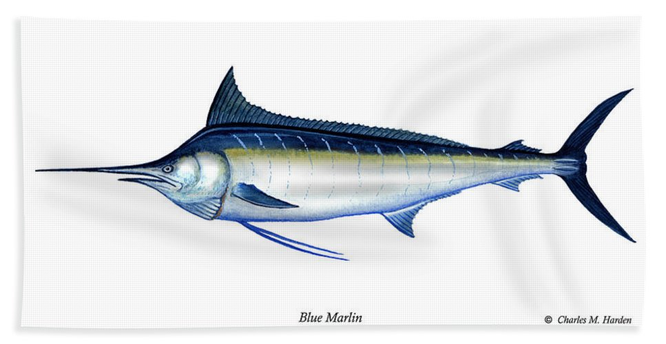 Charles Hand Towel featuring the painting Blue Marlin by Charles Harden