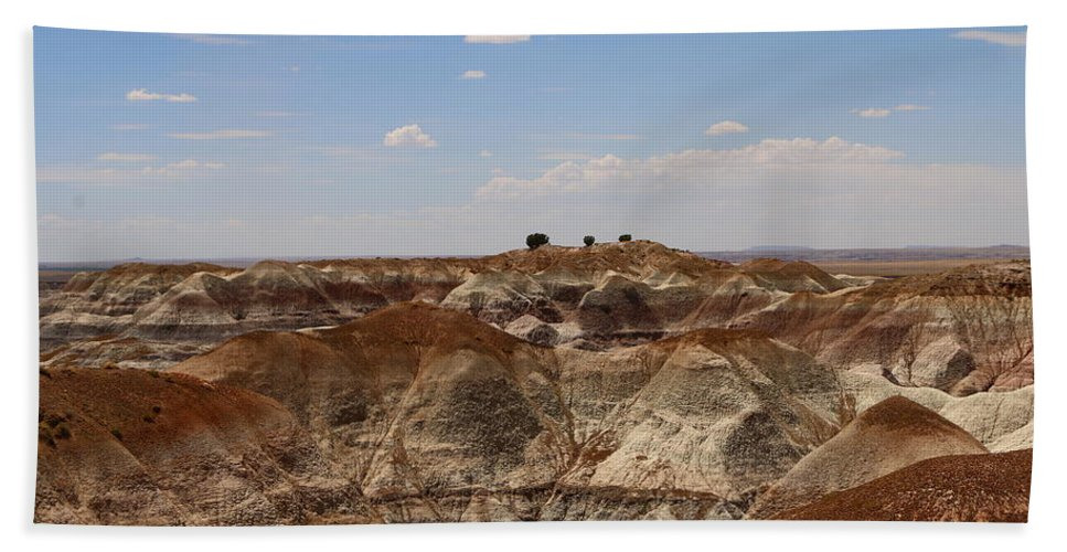 Forest Bath Sheet featuring the photograph Blue Mesa - Painted Desert by Christiane Schulze Art And Photography
