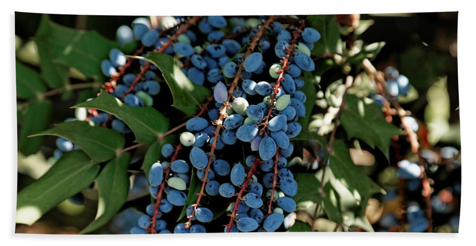 Blue Olives Hand Towel For Sale By Scott Hill