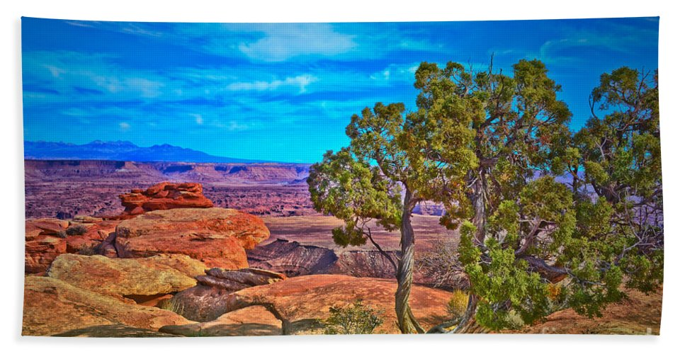 Canyonlands National Park Hand Towel featuring the photograph Blue Skies And Canyons by Tara Turner