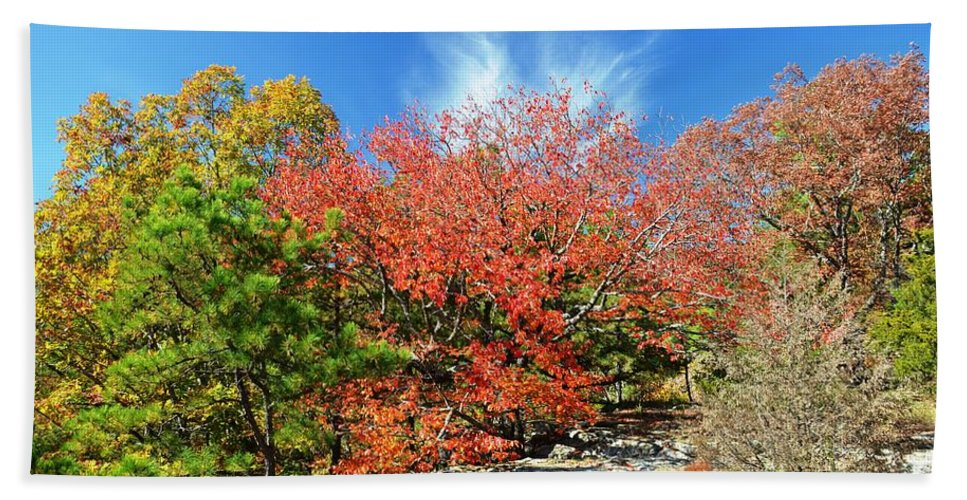 Fall Hand Towel featuring the photograph Blue Skies by Deanna Cagle