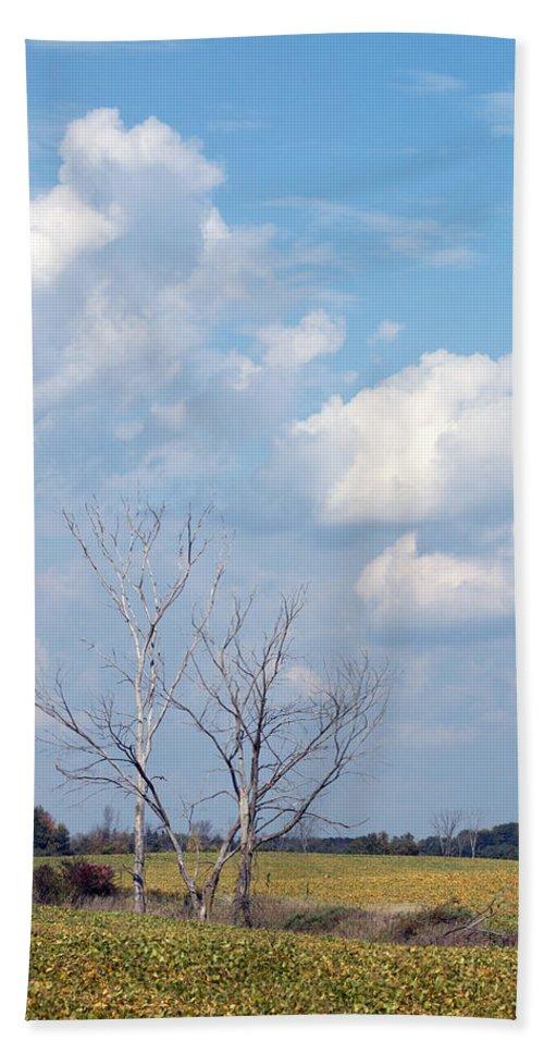 Sky Bath Sheet featuring the photograph Blue Skies by Linda Kerkau