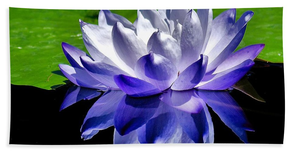 Aquatic Bath Sheet featuring the photograph Blue Water Lily Reflection by Nick Zelinsky