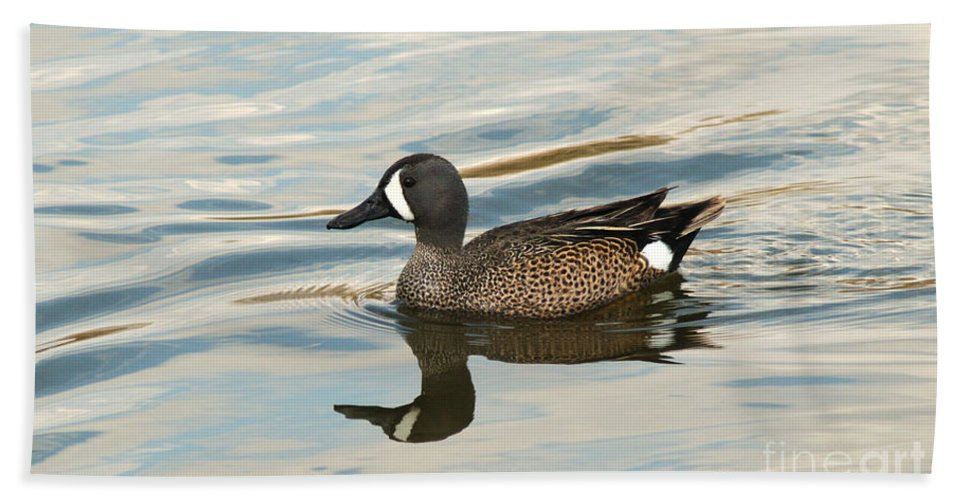 Blue Winged Teal Bath Sheet featuring the photograph Blue Winged Teal by Vivian Christopher