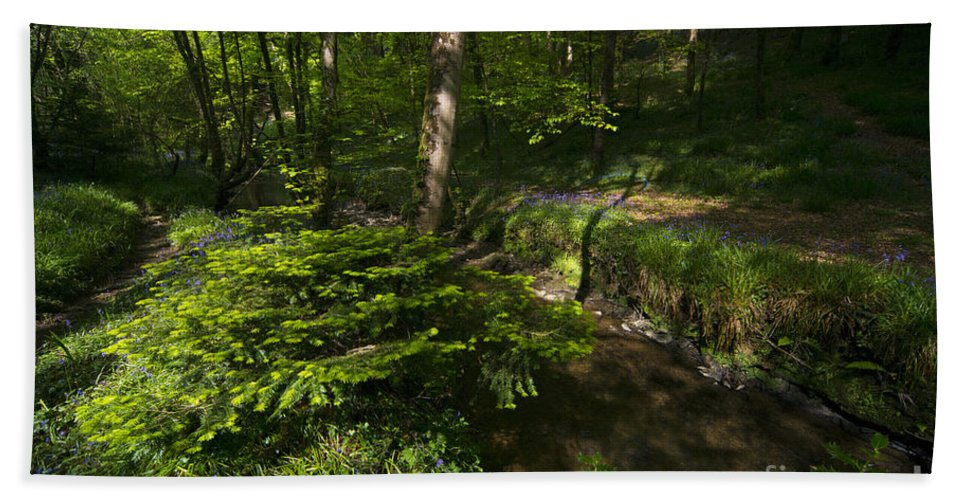 Bluebell Hand Towel featuring the photograph Bluebell Wood by Rob Hawkins