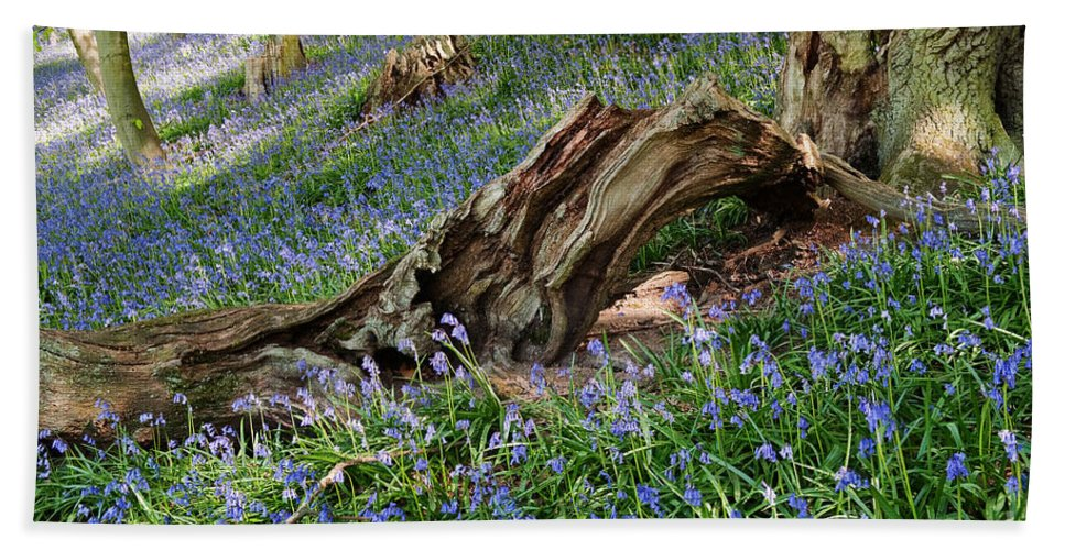 Bluebells Bath Sheet featuring the photograph Bluebells At Bransdale by Richard Burdon