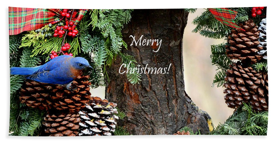 Nature Hand Towel featuring the photograph Bluebird Christmas Wreath by Nava Thompson