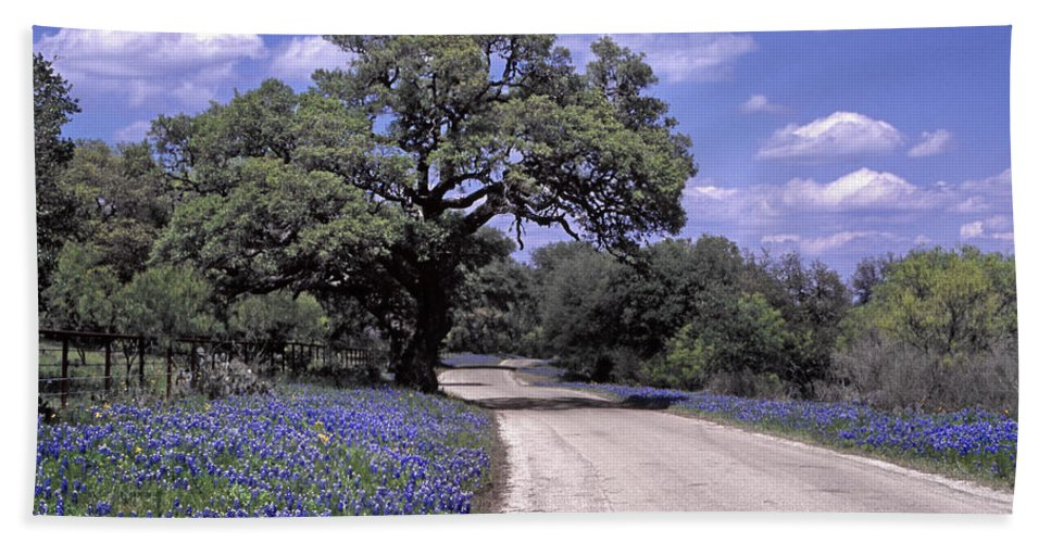 Blue Bath Sheet featuring the photograph Bluebonnet Road by David and Carol Kelly