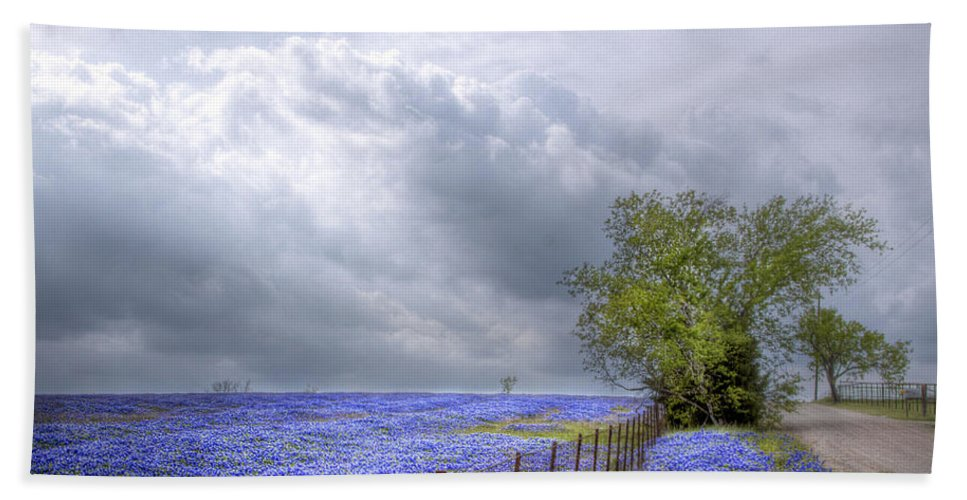 Spring Hand Towel featuring the photograph Bluebonnets And Spring Rain by David and Carol Kelly