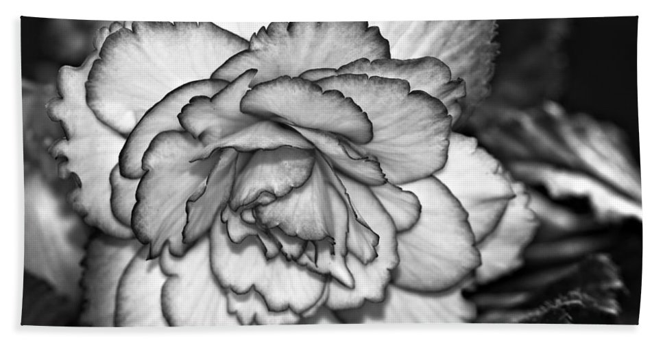 Begonia Hand Towel featuring the photograph Blushing Bw by Steve Harrington