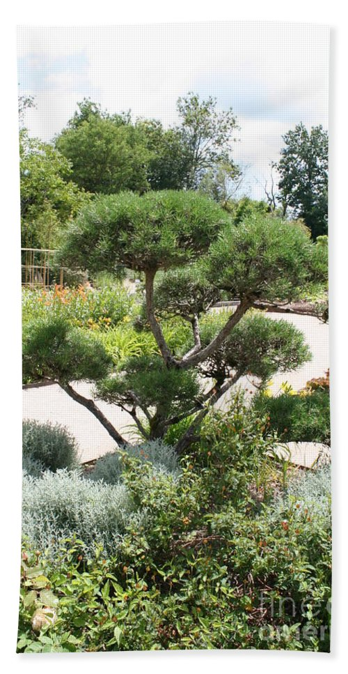 Bonsai Bath Sheet featuring the photograph Bonsai In The Park by Christiane Schulze Art And Photography