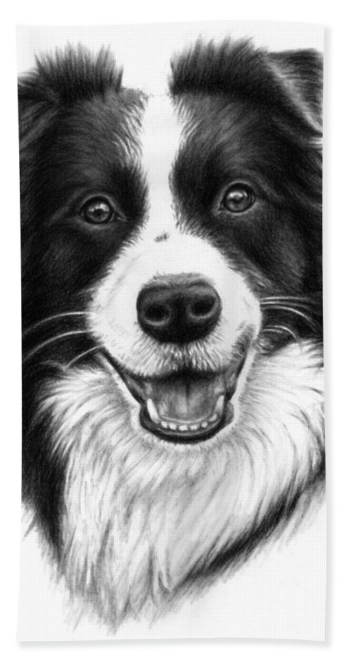 Dog Bath Towel featuring the drawing Border Collie by Nicole Zeug