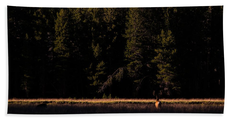 Yosemite Hand Towel featuring the photograph Border Crossing. by Wasim Muklashy
