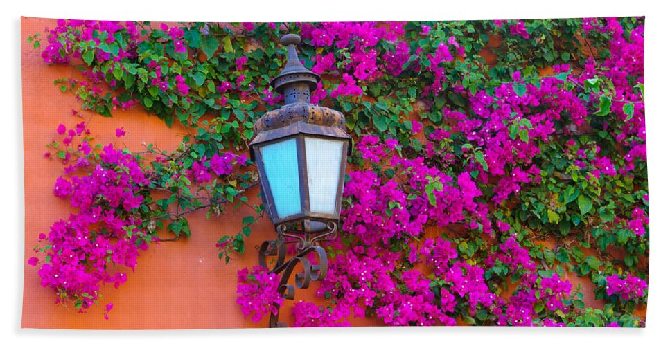 Travel Hand Towel featuring the photograph Bougainvillea And Lamp, Mexico by John Shaw