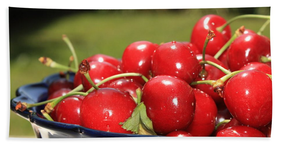 Cherries Bath Sheet featuring the photograph Bowl Of Cherries In The Garden by Carol Groenen