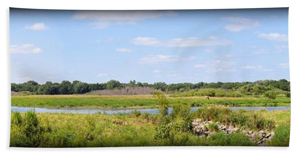 Marsh Hand Towel featuring the photograph Boylan Marsh by Bonfire Photography