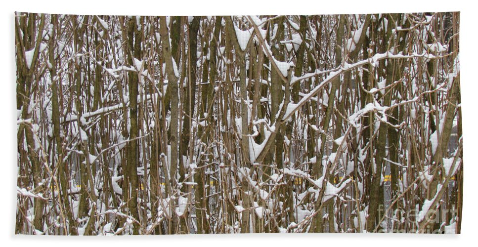 Background Hand Towel featuring the photograph Branches And Twigs Covered In Fresh Snow by Jeelan Clark