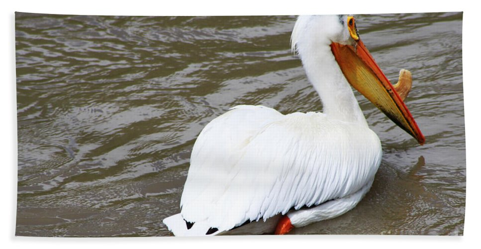 Bird Bath Sheet featuring the photograph Breeding Plumage by Alyce Taylor