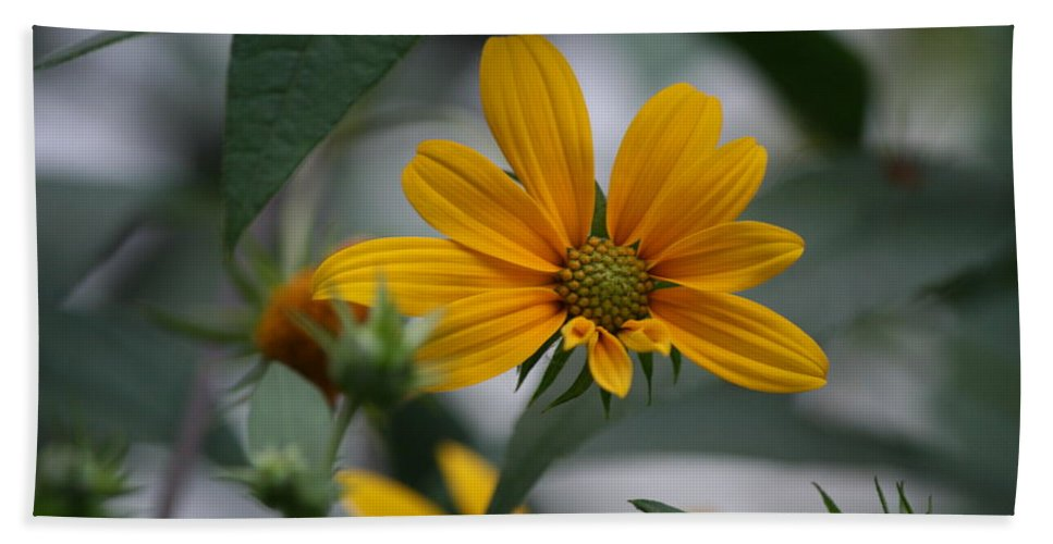 Yellow Flower Bath Sheet featuring the photograph Brighter Days by Neal Eslinger