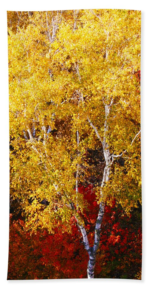 Landscape Hand Towel featuring the photograph Brilliance Of Autumn On Rib Mountain by Tiffany Erdman