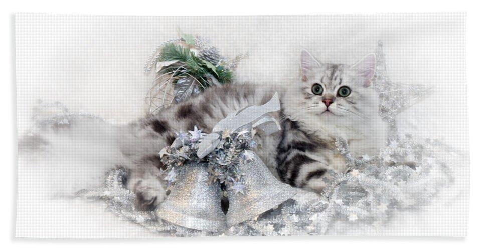 Felidae Bath Towel featuring the photograph British Longhair Cat Christmas Time by Melanie Viola