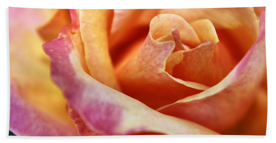 Macro Bath Sheet featuring the photograph Broadway Hybrid Tea Rose by Jason Politte