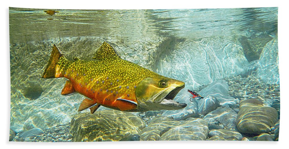 Trout Painting Bath Sheet featuring the mixed media Brook Trout And Silver Doctor by Paul Buggia