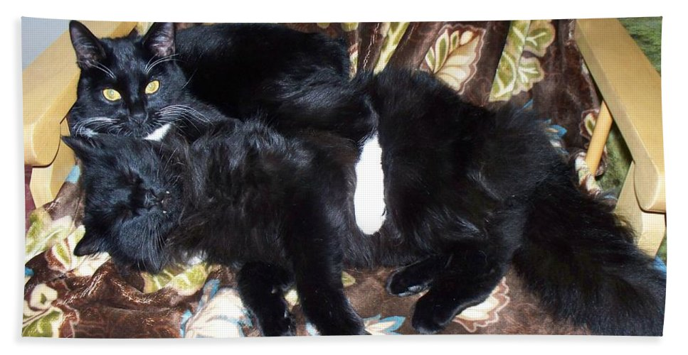 Cats Hand Towel featuring the photograph Brotherly Love by Lisa Wormell